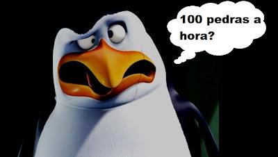prostituição no mundo animais, pinguins se prostituem em troca de favores.