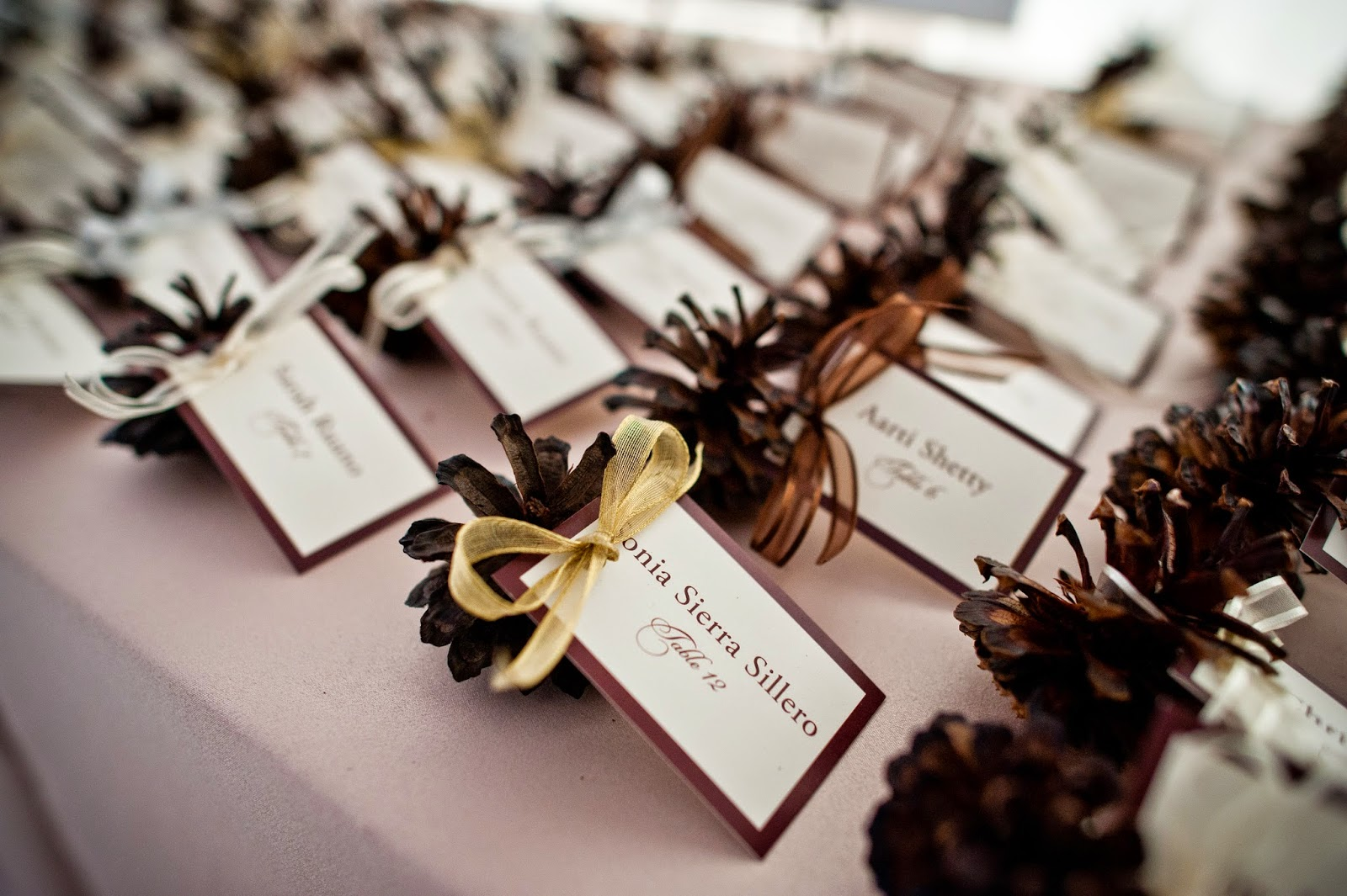 Rustic mounatin pine cone wedding place cards // Kacie Jean Photography // Take the Cake Event Planning