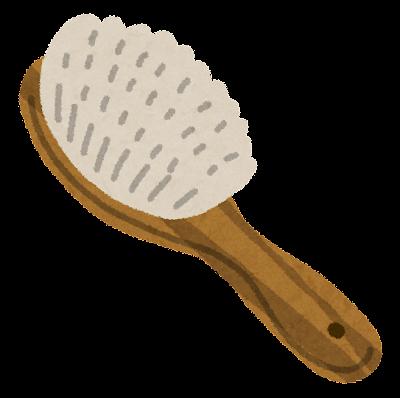 Fashion brush