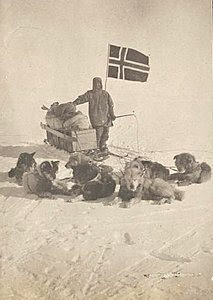 Amundsen and dogs at the Pole