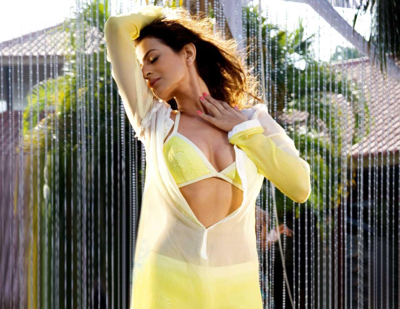 indian actresses hub: amisha patel hot pics hub