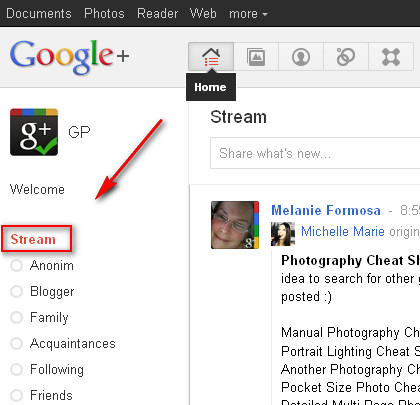 Google+ Stream homepage