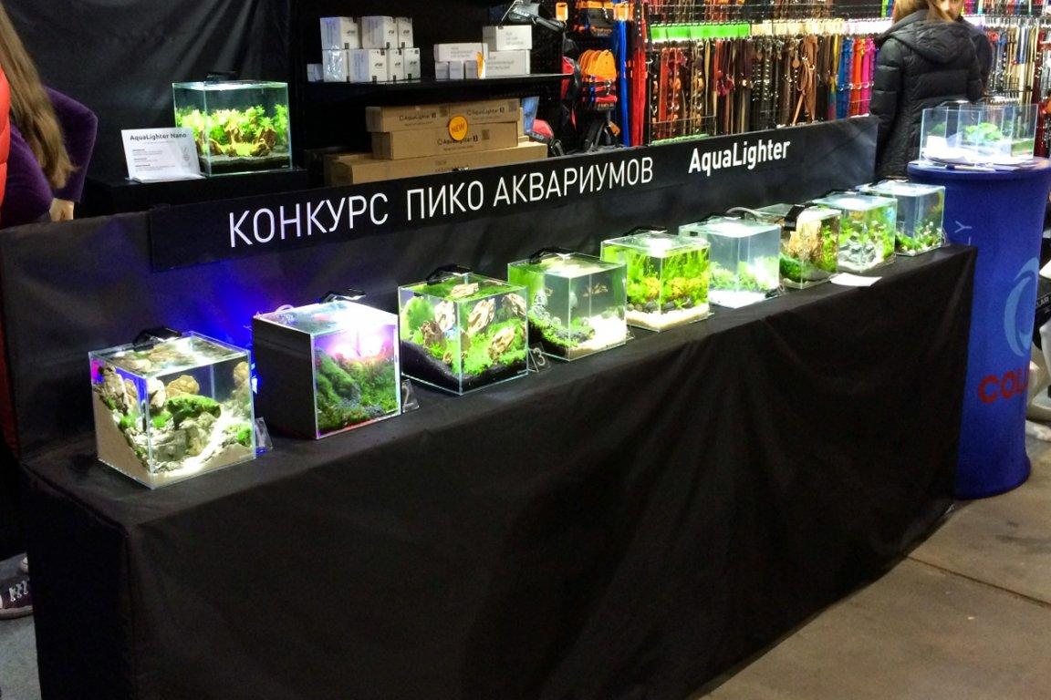Конкурс на дизайн аквариумов