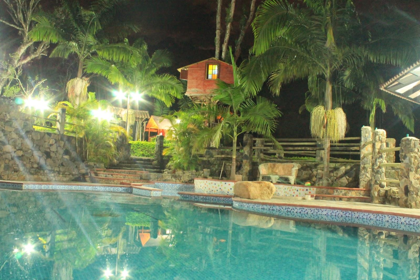 Relax nocturno la casa del arbol san francisco for La casa del azulejo san francisco