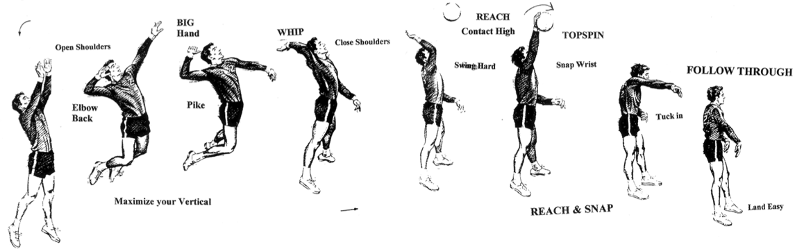 A sport science analysis of the components of volleyball – Part 3 – Attack speed