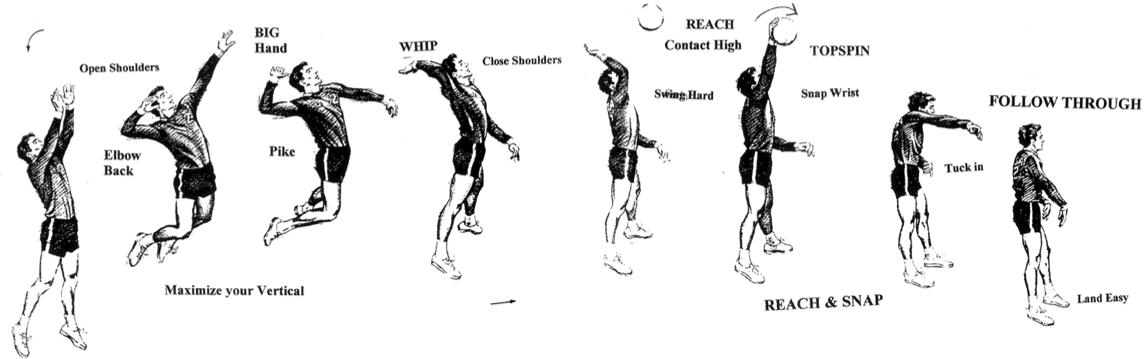 Baseball Swing Steps The Pro Six Step Baseball Swing