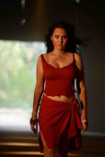 Nisha Kothari photos from Criminals movie-thumbnail-12