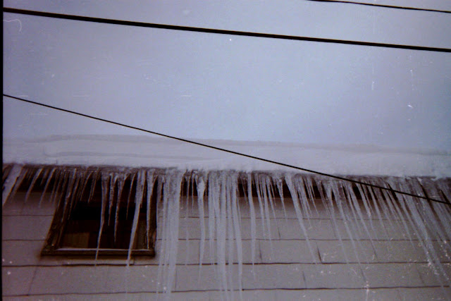 disposable camera, bad exposure, winter, snowfall, snow, nor'easter, icicles, long and sharp