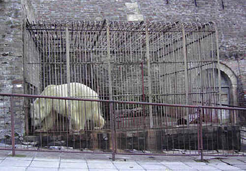 keeping animals in cages is cruel essay