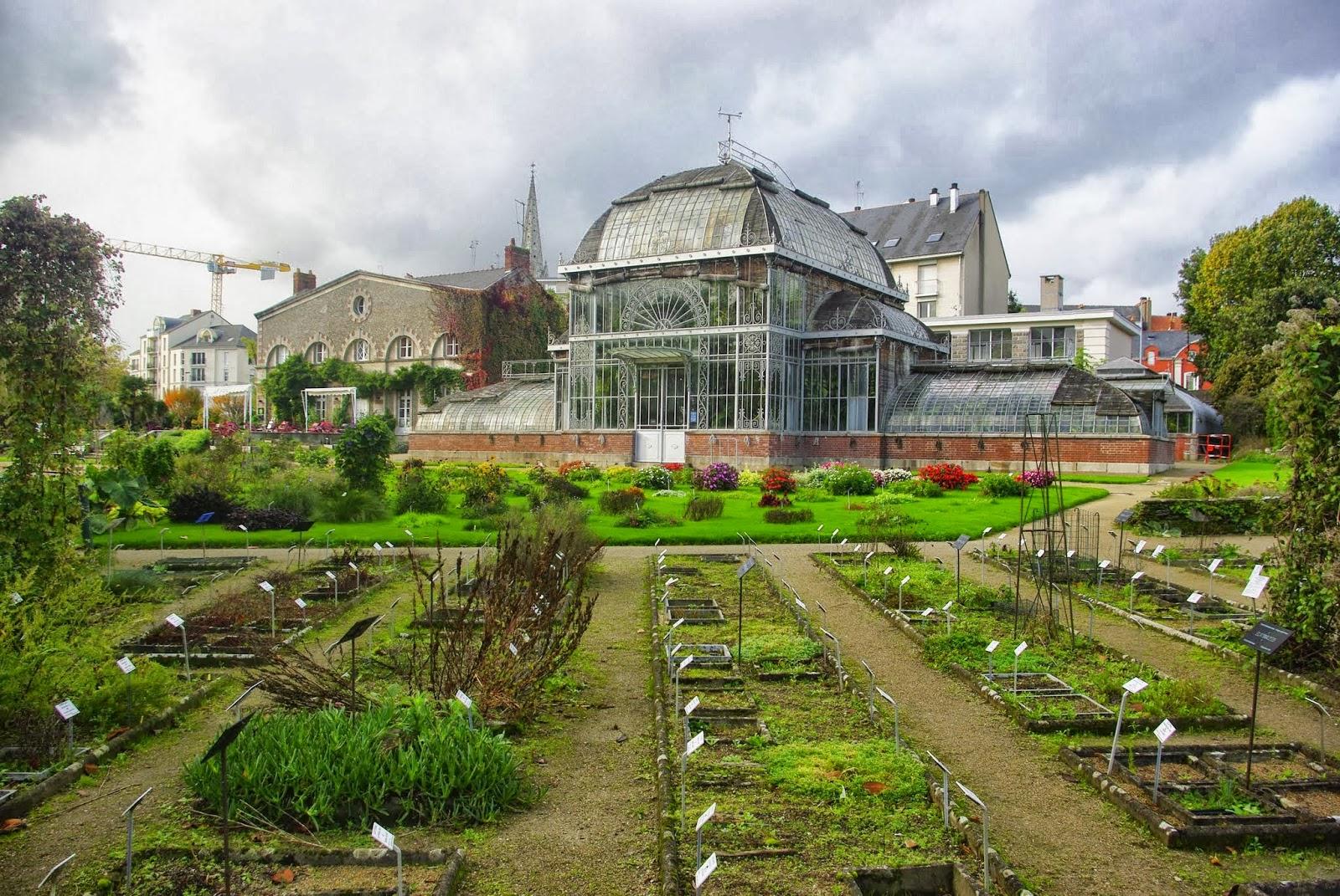 Flore en Valois: Jardin des Plantes de Nantes : palmarium, petite ...