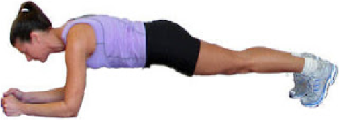 Senam Plank
