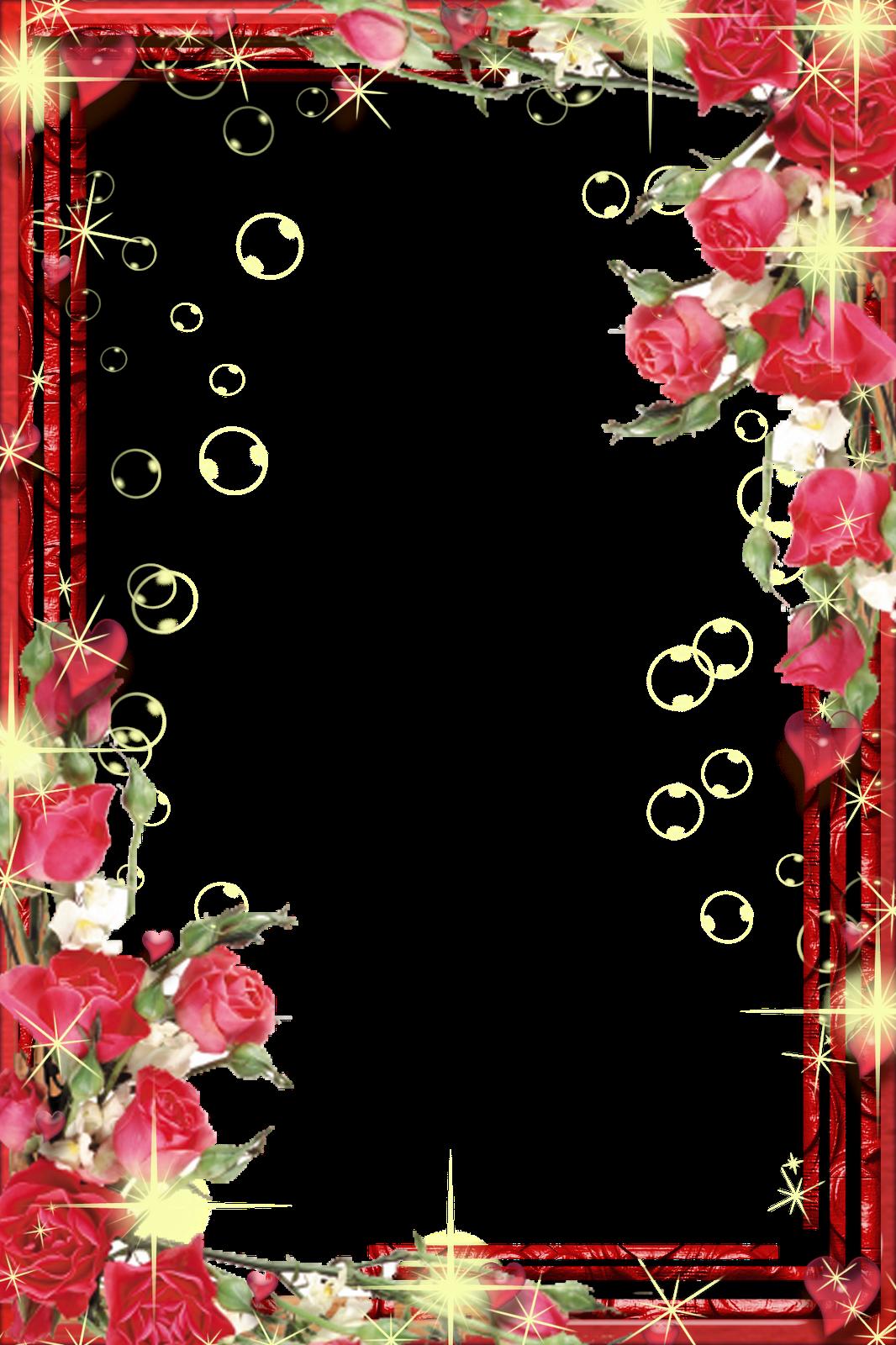 35 frames png flores e cores
