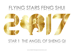 Annual Influences Guide - Flying Stars Feng Shui for 2017