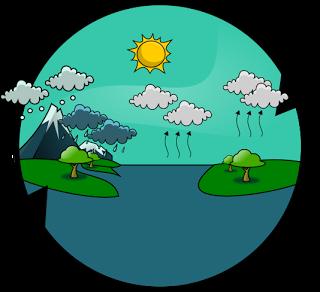 http://www.iesmariazambrano.org/Departamentos/flash-educativos/ciclo_agua.swf