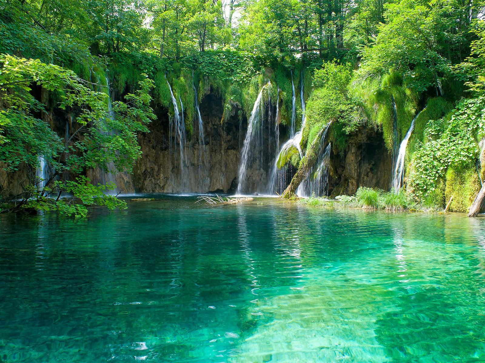 cascadas de agua en el bosque enrte árboles
