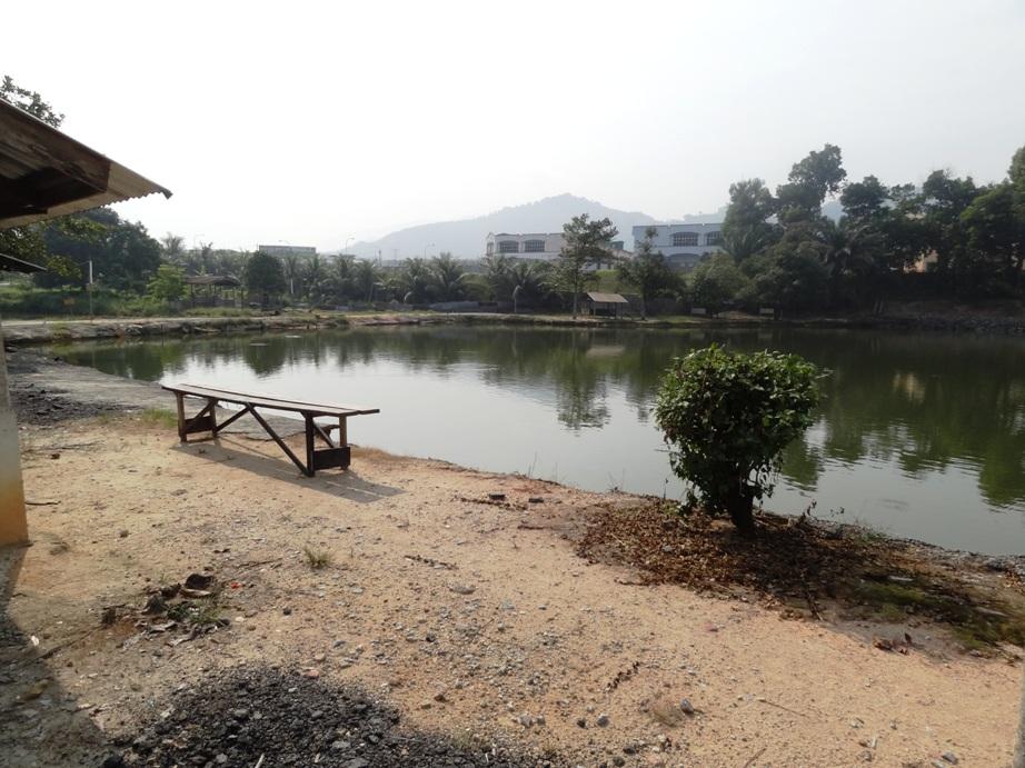 Fishing spots in kuala lumpur selangor pak mat for Freshwater pond fish