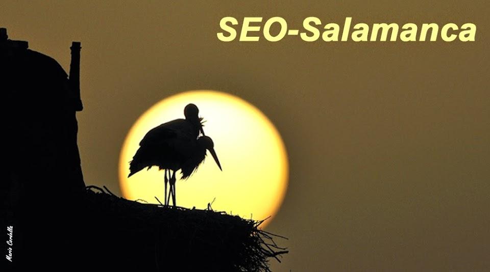 SEO-Salamanca