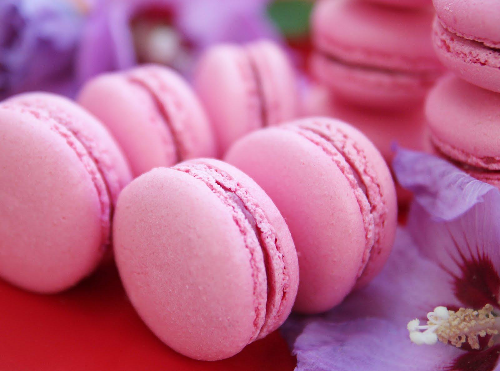 Extrêmement La Cuisine de Bernard : Macarons (base sans garniture) YF96