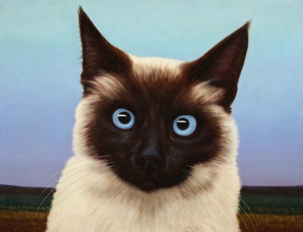 Cuadros modernos pinturas y dibujos animales pinturas al - Dibujos de gatos pintados ...