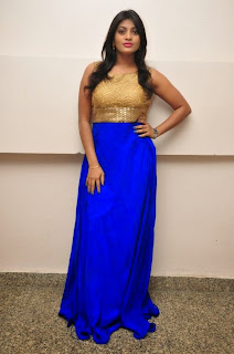 Actress Soumya Latest Pictures in Long Dress at Lion Movie Success Meet   (1)
