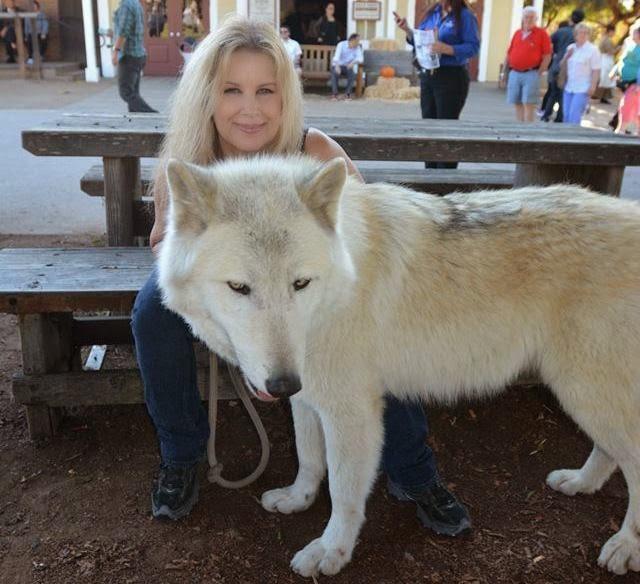 El perro lobo americano y la maldad de la ignorancia