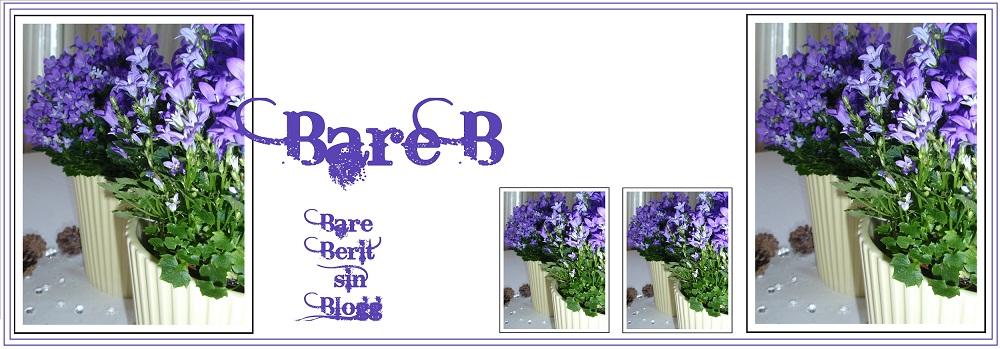 Bare B