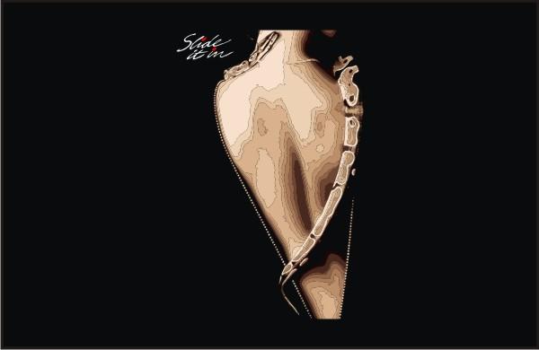 whitesnake-slide_it_in_back_vector