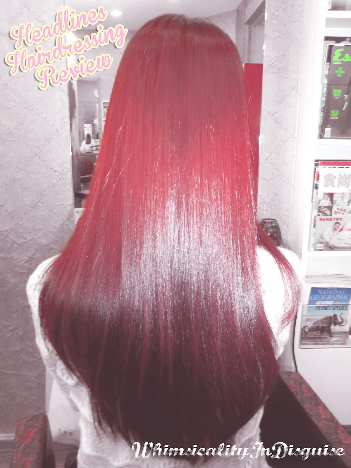 Headlines Hairdressing red hair dye review