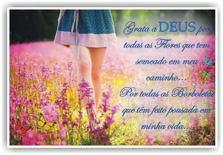 Com Carinho!!