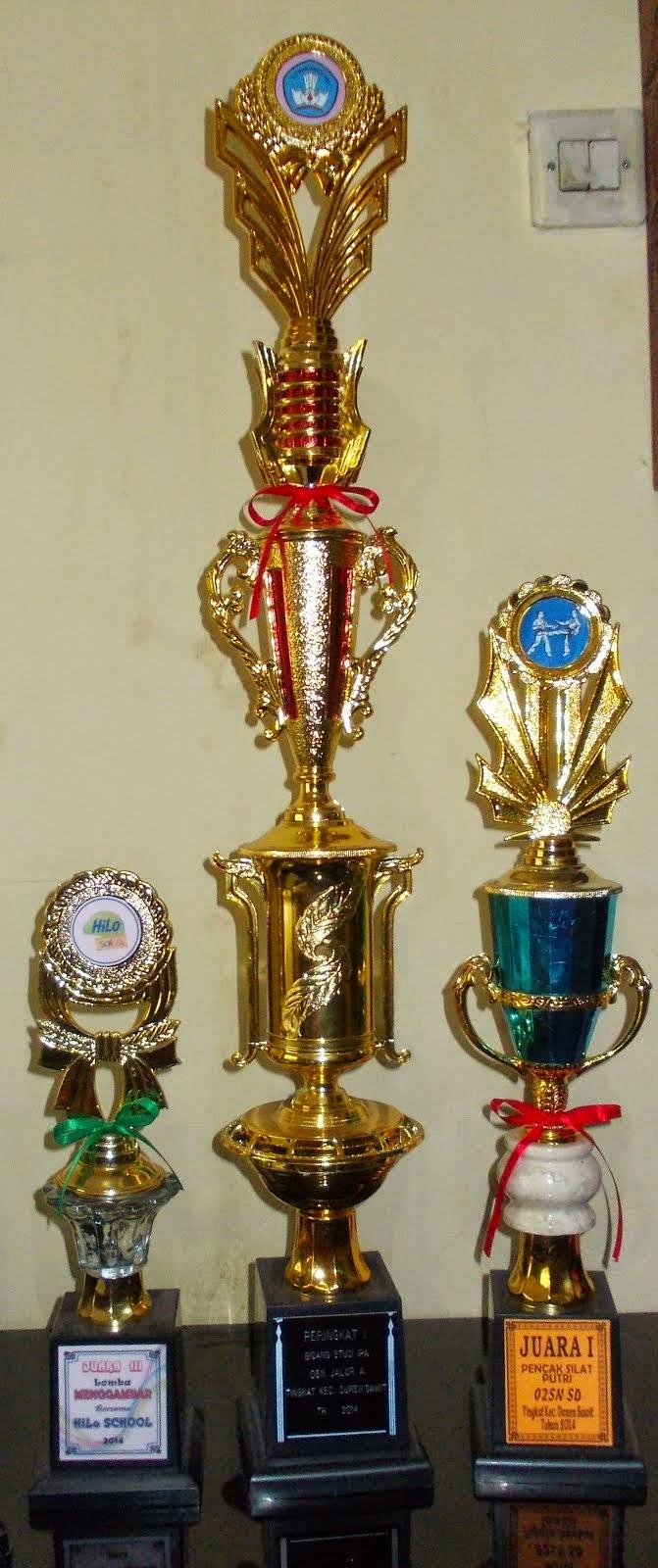 Piala  OSN, Piala O2SN, dan Piala Hilo (2014)