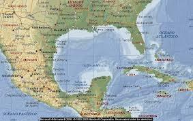 aves del Golfo de Mexico