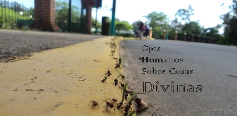 Ojos humanos sobre cosas divinas
