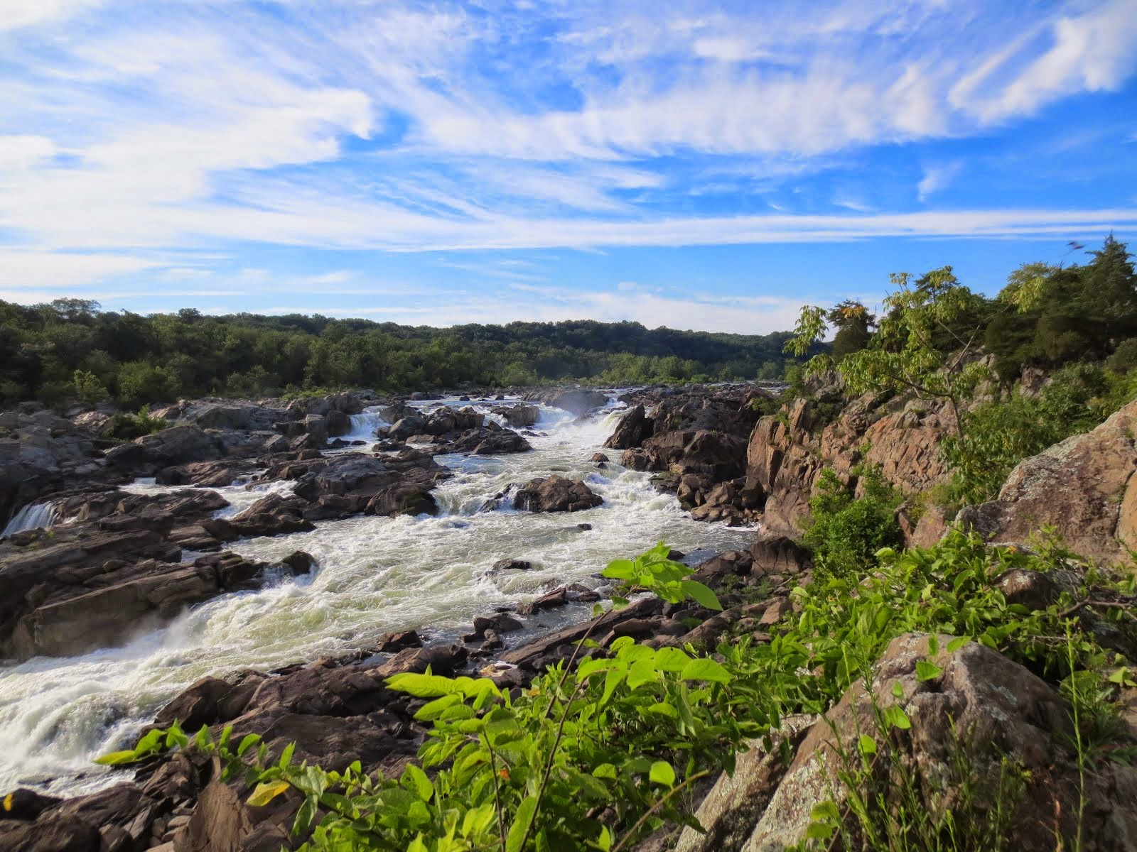 Le Potomac en été