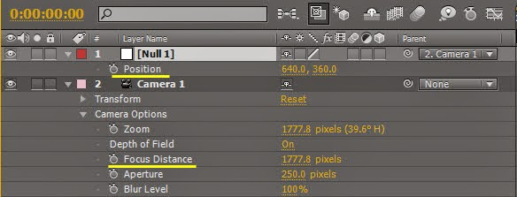 Use Null object control DOF 09
