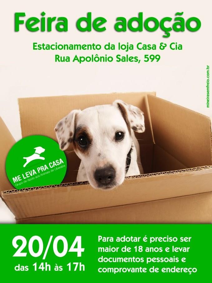 Feira de adoção de cães e gatos da ONG Me Leva pra Casa