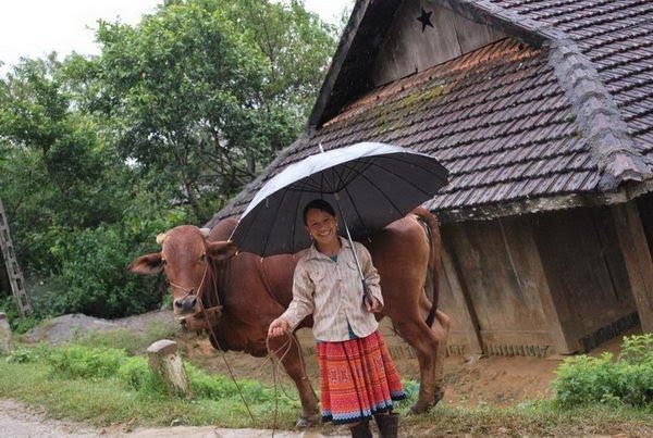 Ethnies minoritaires et trek à Mai Chau - 6 jours