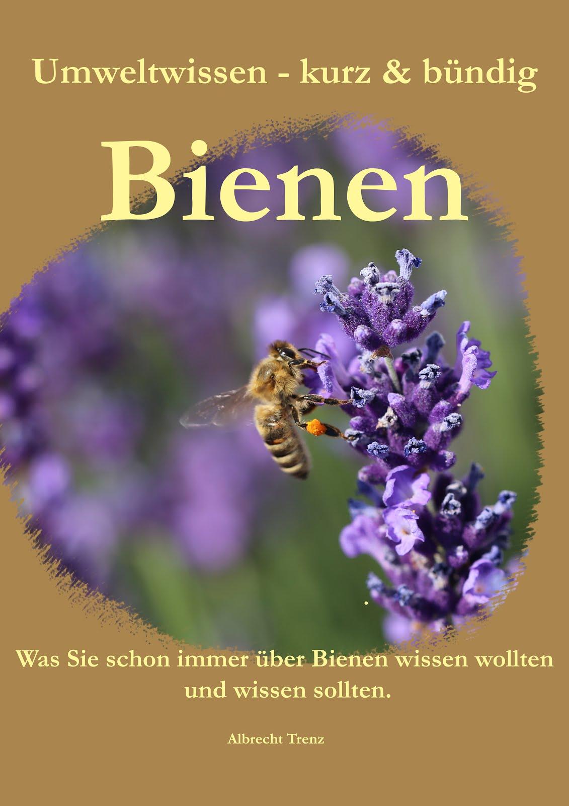Was Sie schon immer über Bienen wissen wollten.