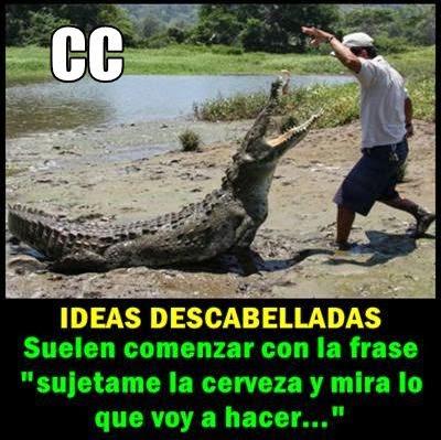 cc-cenutrio-ceporro-cocodrilo