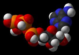 que hacer cuando se tiene el acido urico alto acido urico valores acido urico medicina homeopatica