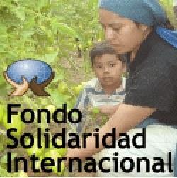 Fondo Solidario Internacional