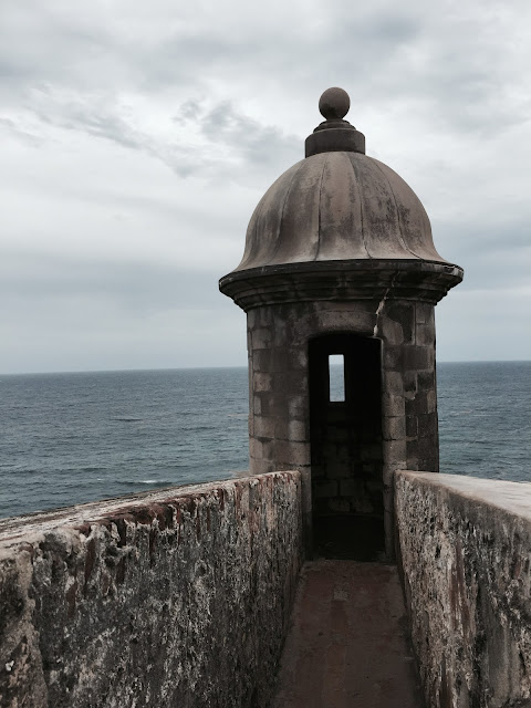 Moving to Puerto RIco for Act 20 Act 22 Expats