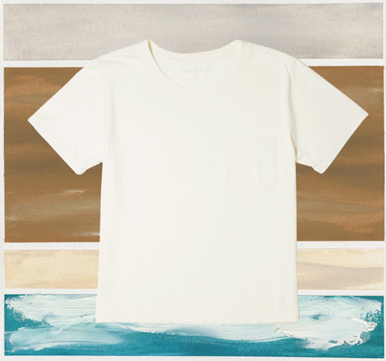 Everlane tee, the mineral collection white t-shirt