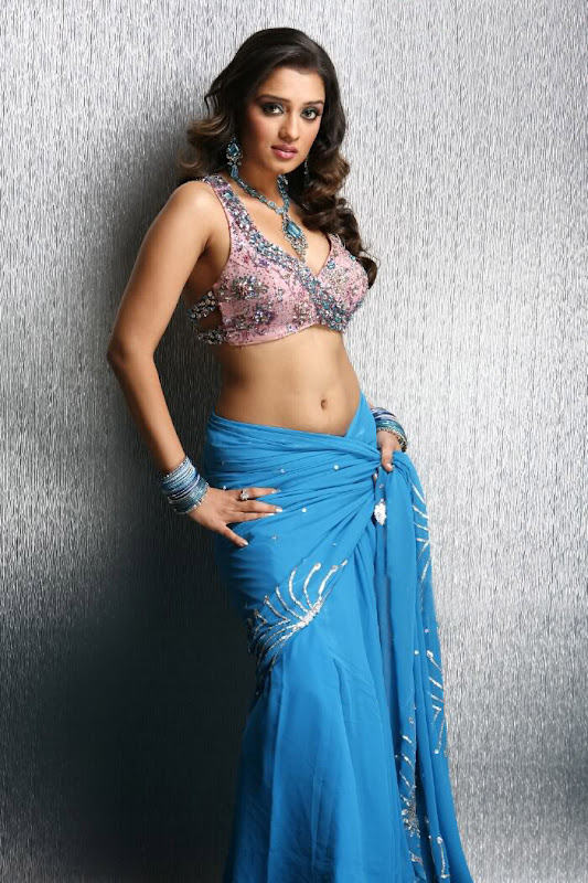 Actress Nikitha Hot Saree Below Navel Show Photos wallpapers