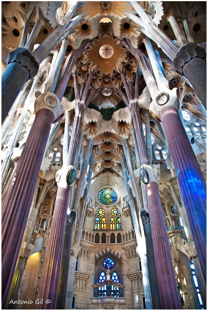 Mis ltimas fotos interior del templo de la sagrada familia for La sagrada familia interior