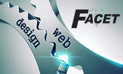 Facet Tech Web Development Peoria IL