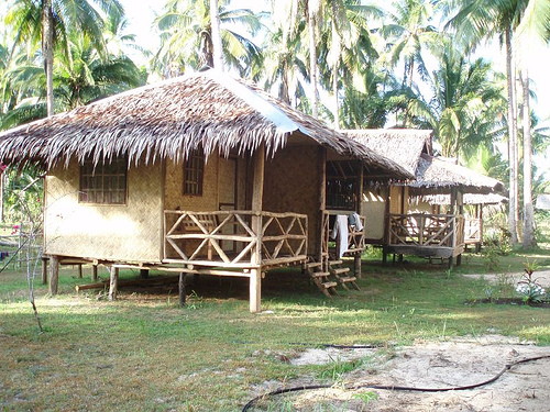 Bamboo House Designs In The Philippines1