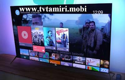 Beşiktaş Philips TV Servisi