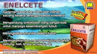 jauhkan kolesterol dal tubuh dengan enelcete
