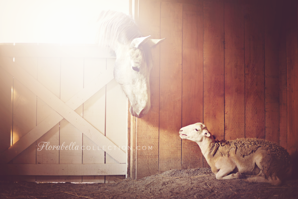 Dreamer the horse and Hope the lamb - Florabella Collection