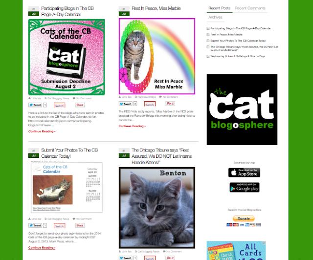 Silver on CatBlog